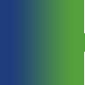 icon credit card